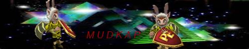 Name:  mudcap finished.jpg Views: 108 Size:  21.3 KB