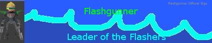 Name:  flashsig2.png Views: 75 Size:  40.0 KB
