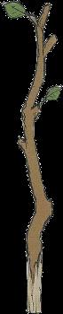Name:  Tree_Branch_(FE13_Artwork).png Views: 1136 Size:  24.6 KB