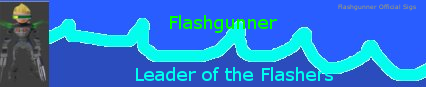 Name:  flashsig2.png