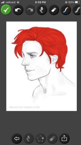 Name:  hair2.jpg Views: 191 Size:  14.1 KB