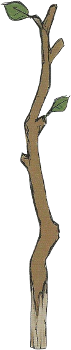 Name:  Tree_Branch_(FE13_Artwork).png Views: 1031 Size:  24.6 KB