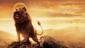 Name:  roar.jpg Views: 268 Size:  6.6 KB