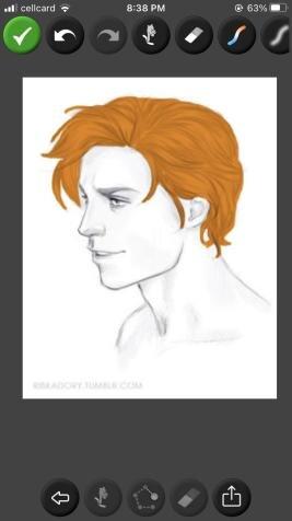 Name:  hair5.jpg Views: 175 Size:  13.9 KB
