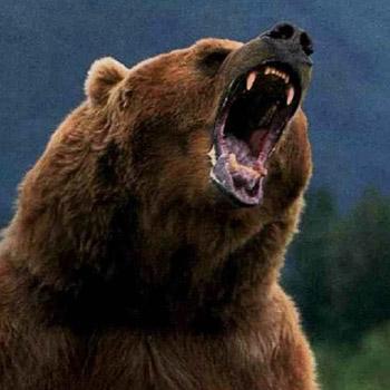 Name:  bear-attack-Alaska.png Views: 7632 Size:  187.6 KB